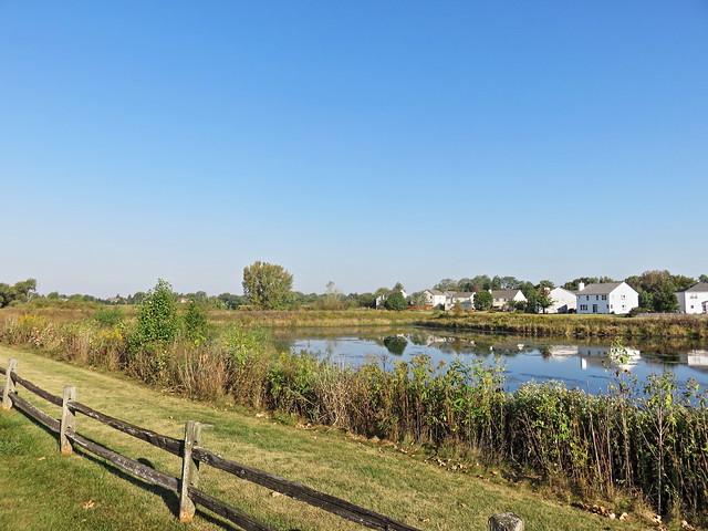 Jones Meadow Park pond reflections 20170924