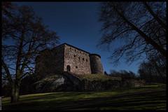 Raseborg Castle in Moonlight (redux)