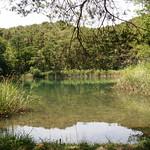 Mi, 19.07.17 - 13:30 - Pfynwald