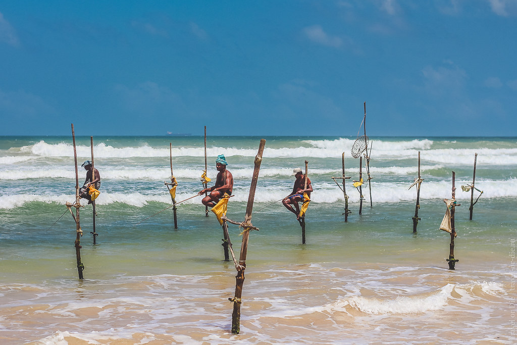 22.06-Mirissa-Sri-Lanka-canon-1500px-003