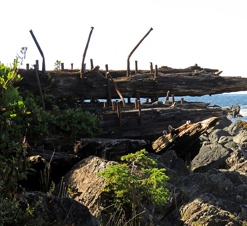 Remains of a shipwreck on Ucluelet's Wild Pacific Trail