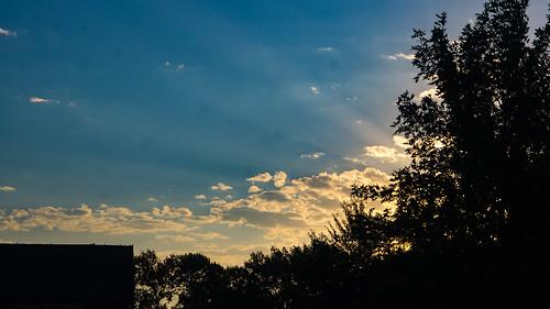 morning landscape flowers nature outdoors trees sertomapark sky theoutdoorcampus clouds siouxfalls sd unitedstates sunrise