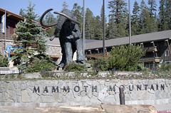 Mammoth July 2017