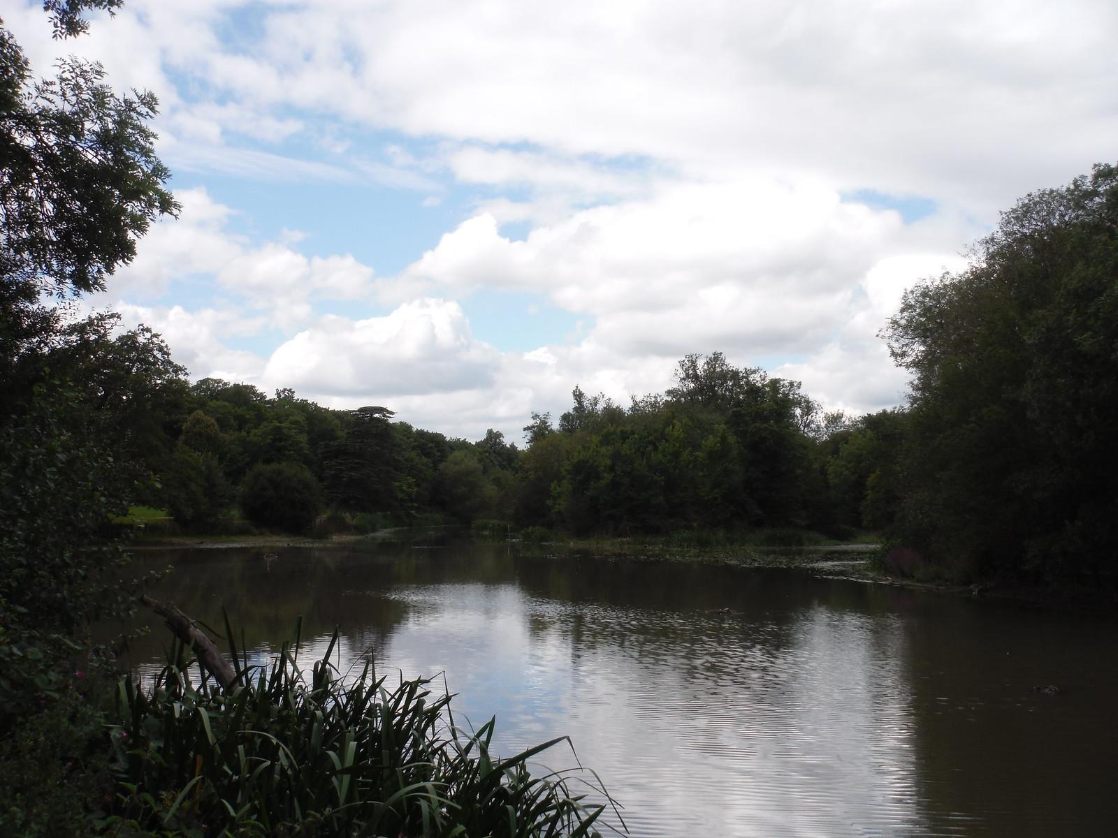 Part of Ornamental Pond SWC Walk Short 11 - Wanstead Park