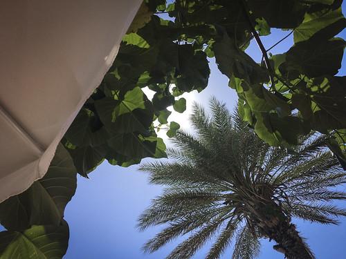 cyprus travel vacation mediterranean island