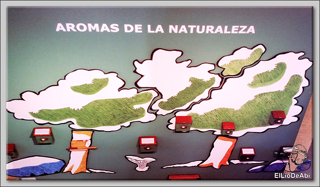 Conociendo recursos turísticos en la Ribera del Duero (24)