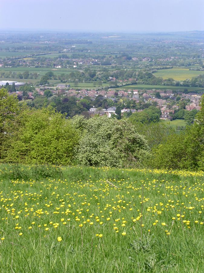 View from Whiteleaf Hill