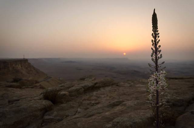 Sunrise at Mitzpe Ramon