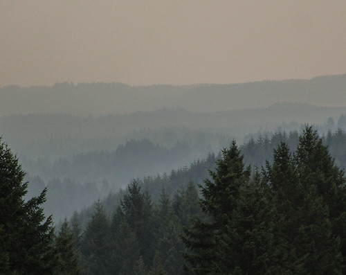 wildfire smoke haze trees sky distance view hike cztrail landscape outdoor oregon pnw aerialperspective atmosphericperspective