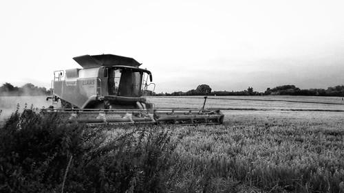 Evening combine