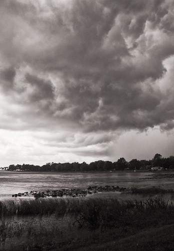 fisherbray usa unitedstates florida lakecounty leesburg nikon d5000 venetiangardens park lakeharris lake water wasser thunderstorm clouds sky monochrome bw silverefexpro