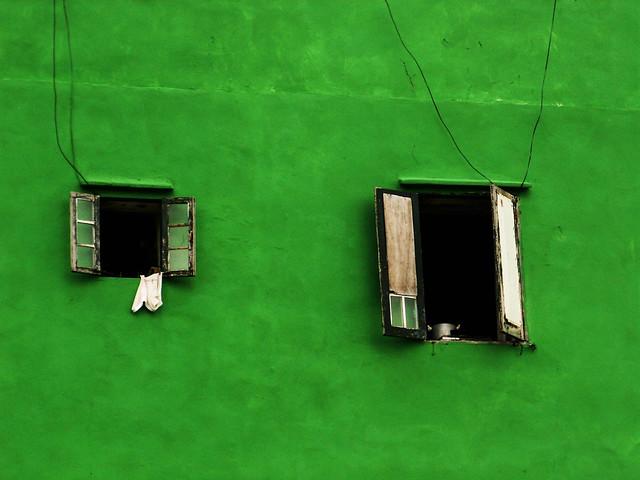 Green Peace Barna