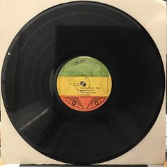 BUNNY WAILER:DUBD'SCO VOL.2(RECORD SIDE-A)