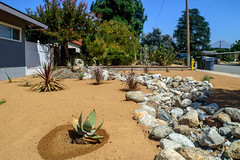 DLS Best Low Water Landscaping Desert Drought Tolerant Resistant Service in Rancho Cucamonga,Upland,Claremont CA