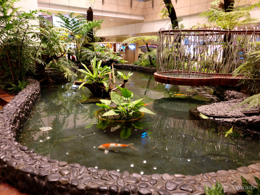 singapore airport fish pond