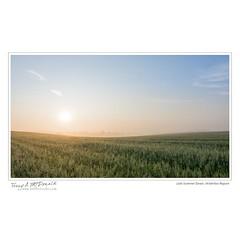 Late Summer Dawn, Waterloo Region
