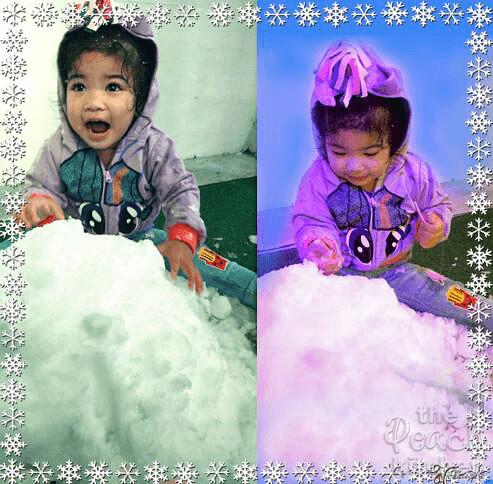 Ice-Flower-8