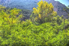 Vista desde el merendero de Arguis - (Huesca - España)