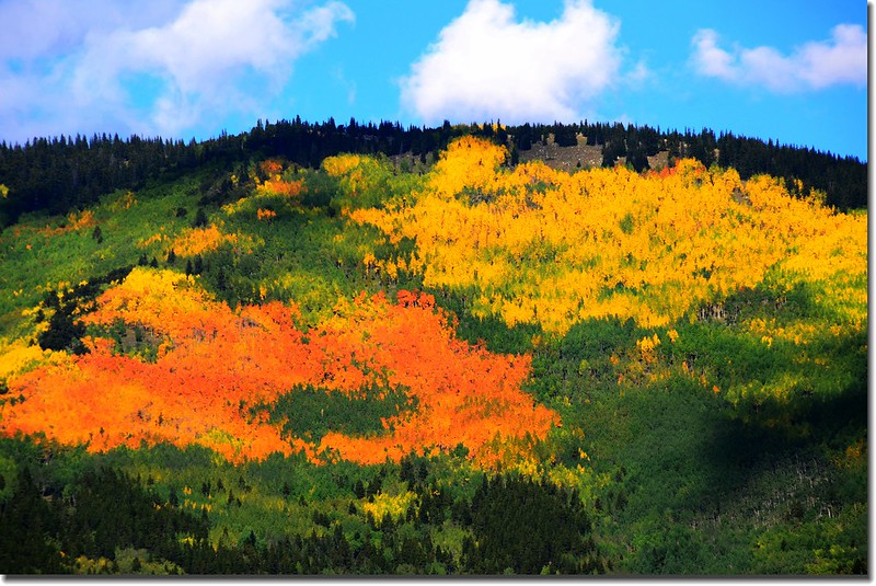 Fall colors, Mount Evans Scenic Byway, Colorado (7)