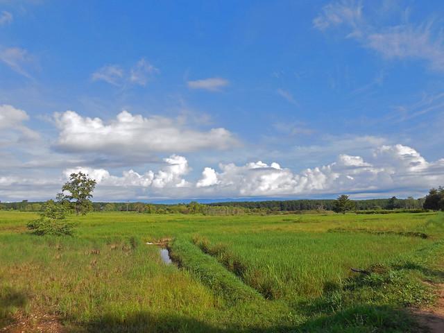 Rice paddies in Non, Nikon COOLPIX S5200