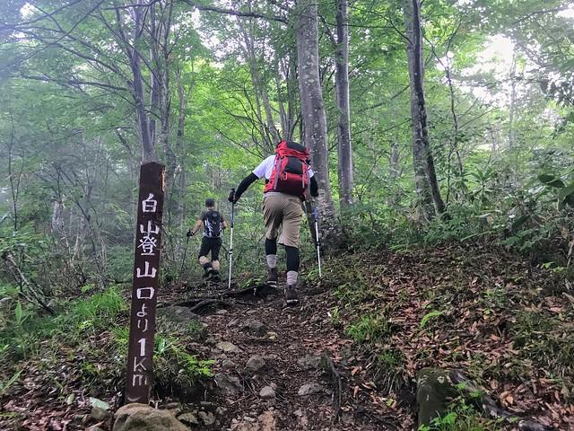 銚子ヶ峰 登山道 登山口より1km地点