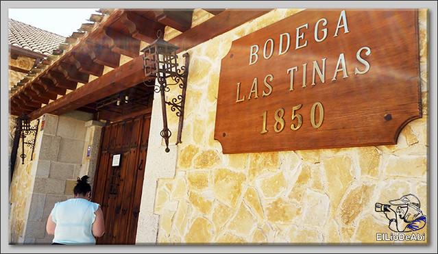 Conociendo recursos turísticos en la Ribera del Duero (13)