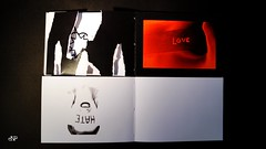 Remix Book_I AM_Nicoleta Faina_28
