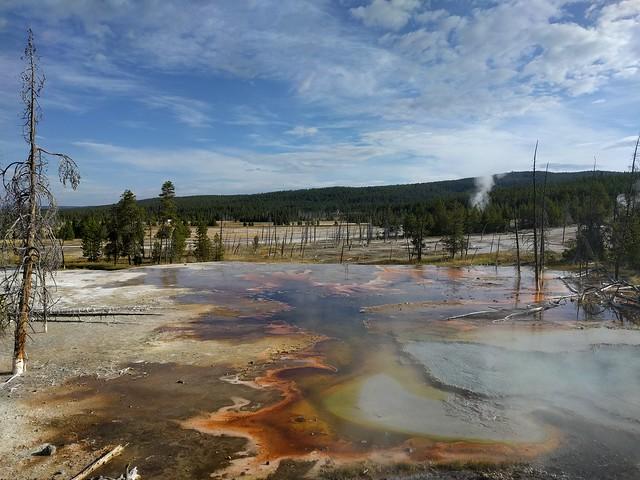 091317 Yellowstone (351)