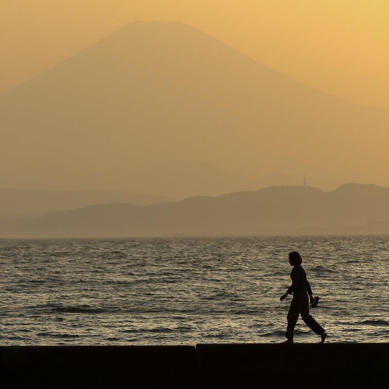 Fuji & Sunset