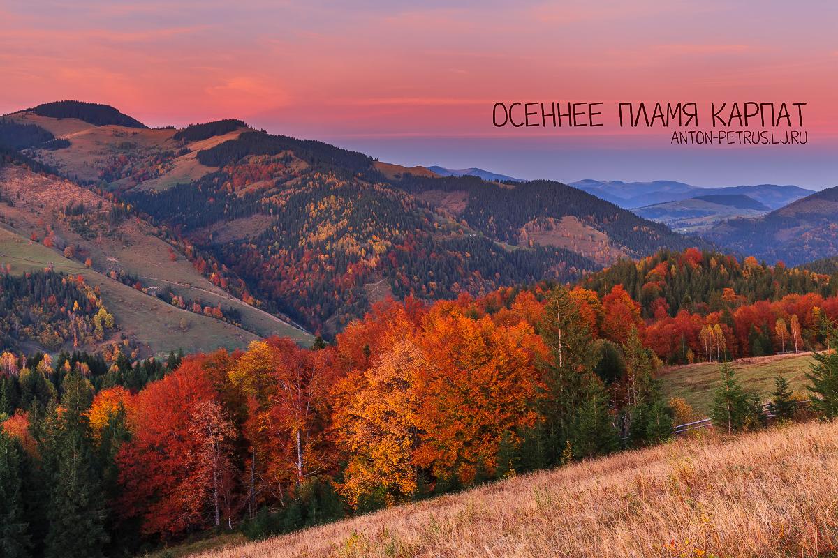 Осенне пламя Карпат