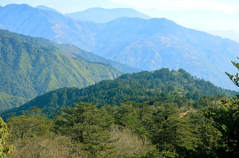 Distant horizon edges as seen from Singlila Forest, Sandakphu