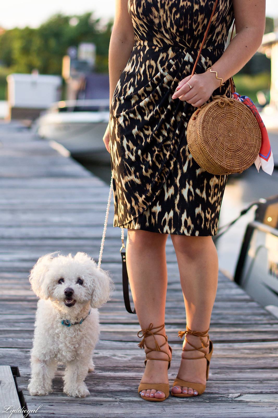 leopard sheath dress, round rattan bag, dog walking-2.jpg