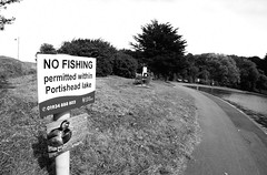 98 of Year 4 - No fishing fisheye