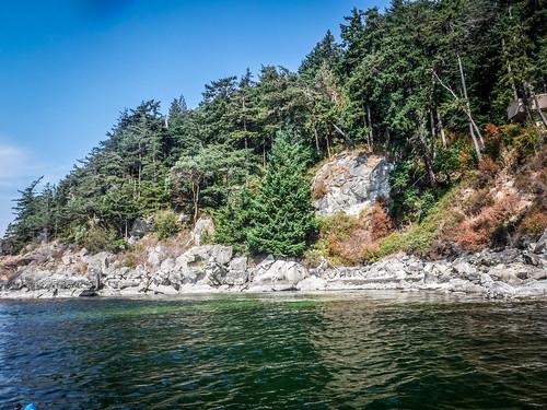 Kayaking Bellingham Bay-50