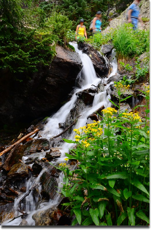 Cascade along the trail (7)