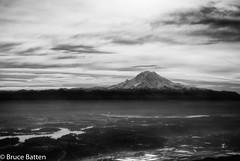 081115 Seattle-Honolulu-01-B&W.jpg