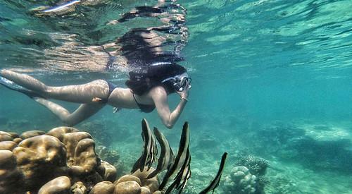 Open Trip Pulau Harapan Jakarta