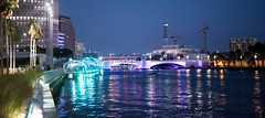 Stunning Curtis Hixon Waterfront Park nightscape.