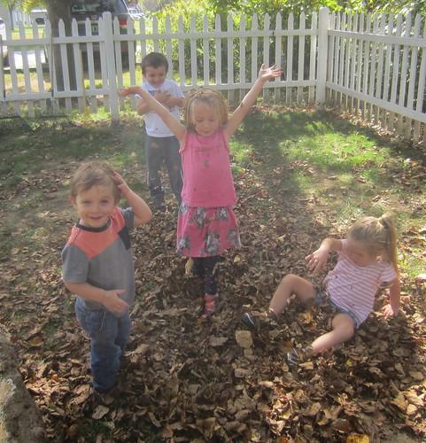 leaf pile!