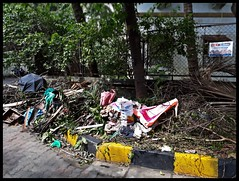 NOT Swachh Bharat : Rubbish on the roadside