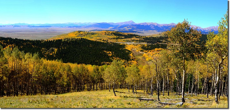 Fall colors, Kenosha Pass  (49)
