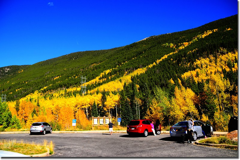 Fall colors, Guanella Pass, Colorado (41)