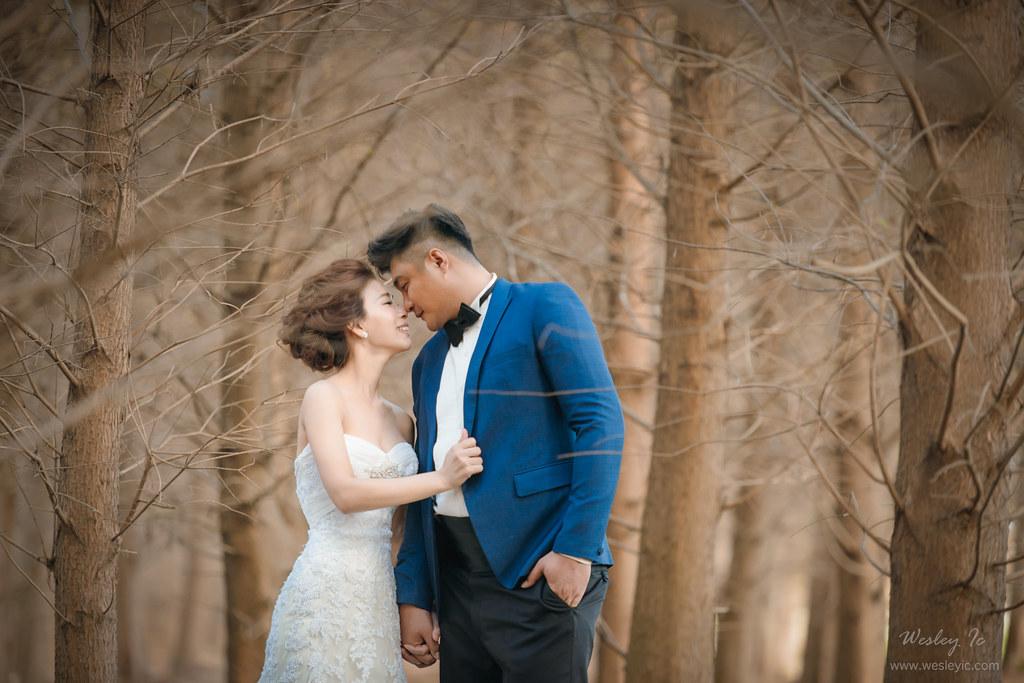 """""""婚攝,自助婚紗,自主婚紗,婚攝wesley,婚禮紀錄,婚禮攝影""""'LOVE40051'"""