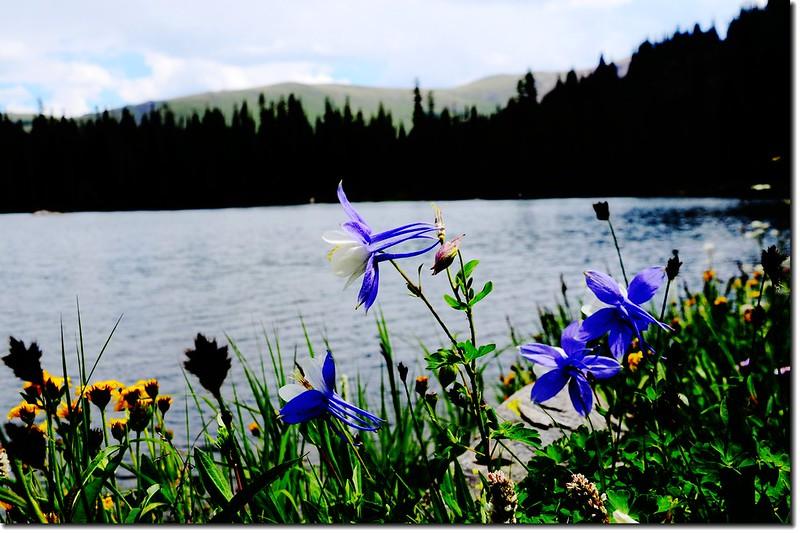 North Crater Lake 5