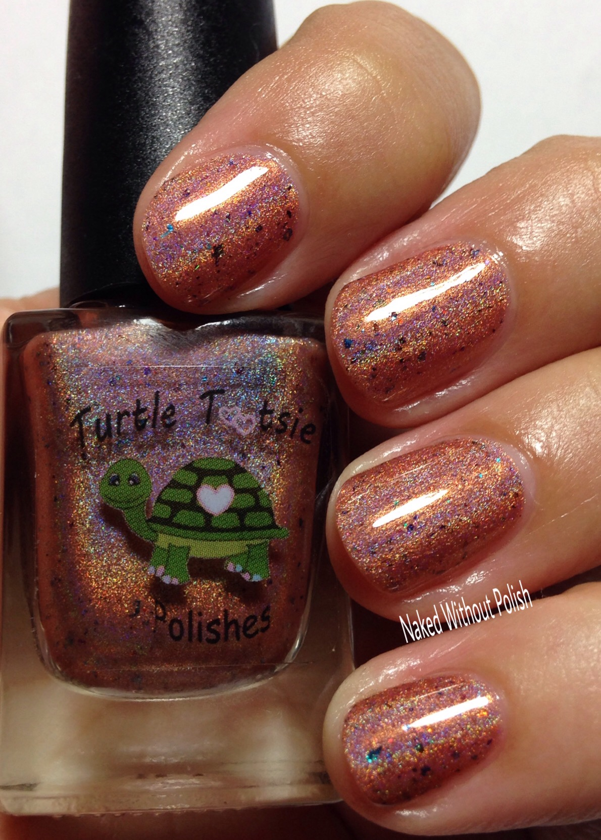Turtle-Tootsie-Polishes-If-You-Cant-Be-an-Athlete-Be-an-Athletic-Supporter-11
