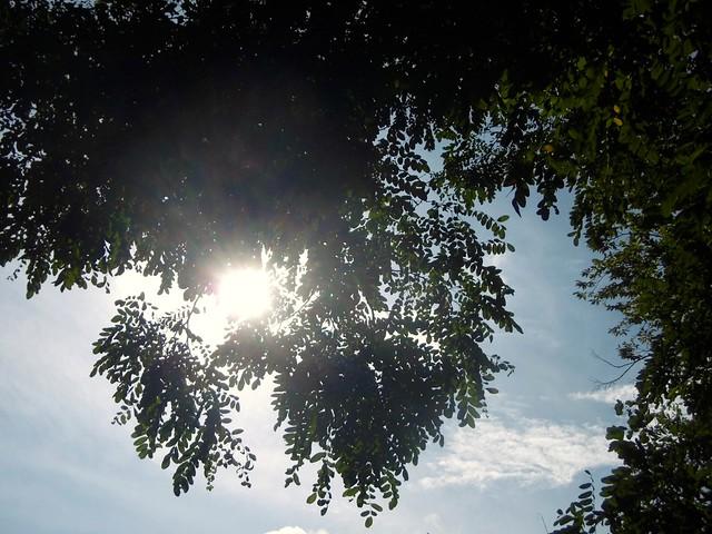 8 Himmelsbilder.....8