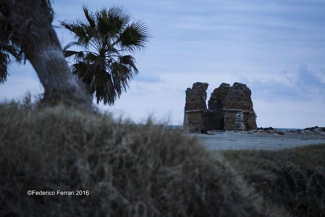 13 Torre Flavia Rudere dett