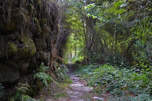 Caminho do Prado VI