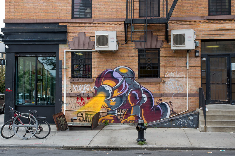~ Street Art NYC ~
