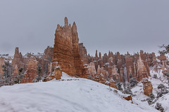 Snow-dusted Hoodoos in Bryce Canyon